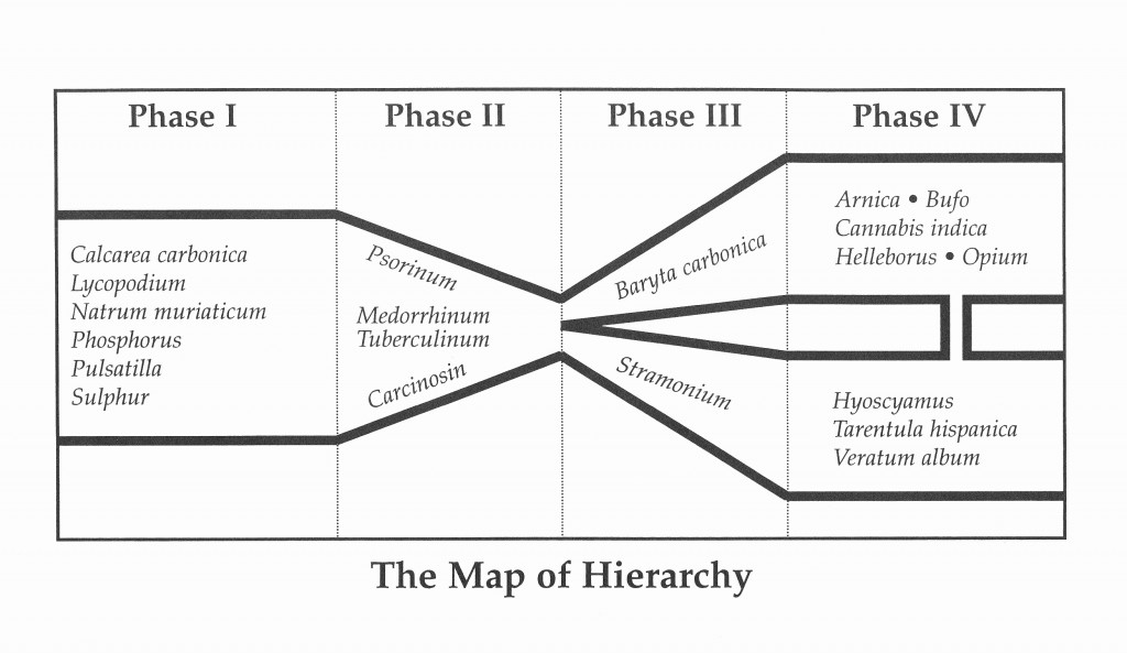 The Map of Hierarchy and a Case of Autism « New England