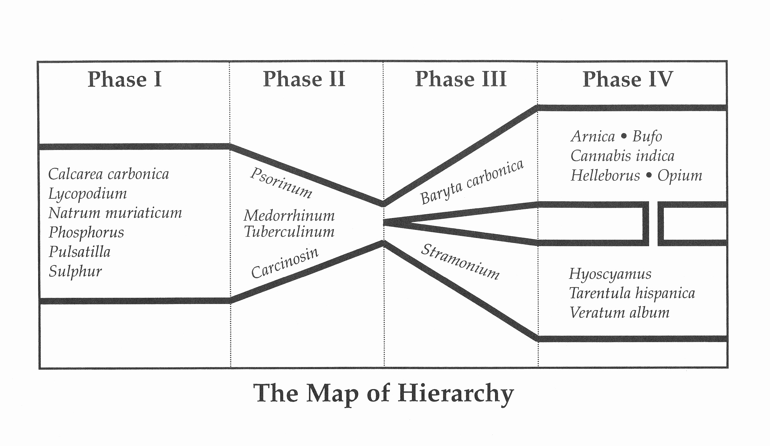 The Map of Hierarchy and a Case of Autism New England School of